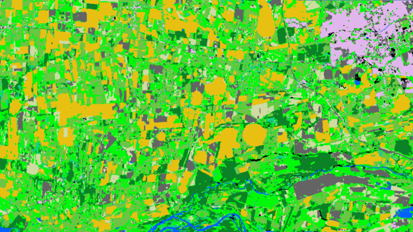 Land Cover Analysis